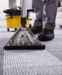 Quality Carpet Cleaning, Los Angeles